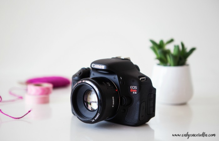 Digital Photo Organization for Home Business Owners | Calyx and Corolla